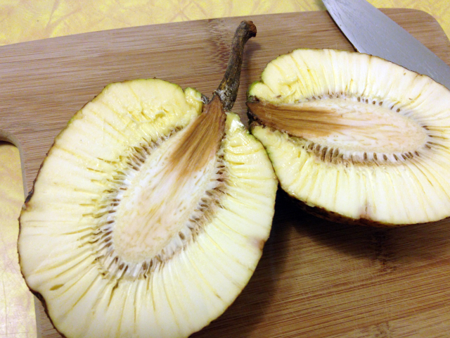 Fresh breadfruit or 'ulu, cut in half