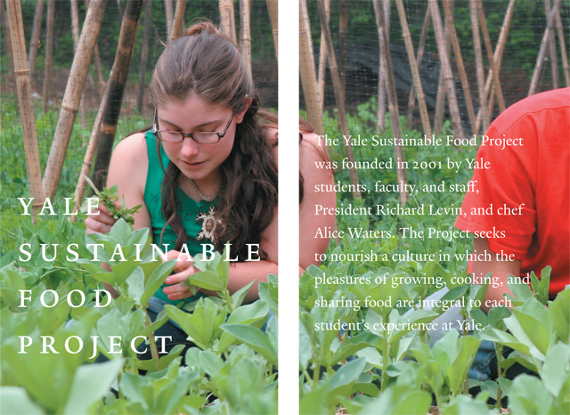 yale sustainable food project Dishing up local food on wisconsin campuses (research brief #55) posted january 2001 if colleges and universities purchased five to ten percent of their food directly from local farms, imagine the extra income that could end up in wisconsin farmers' pockets.